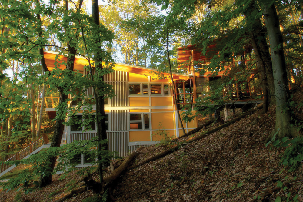 Yellow House in the Woods