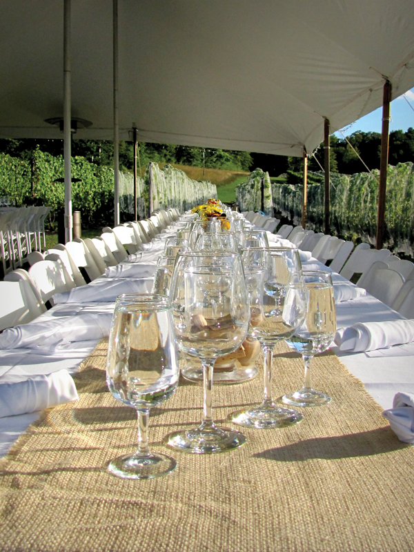 Dining in the Vines Table Setting