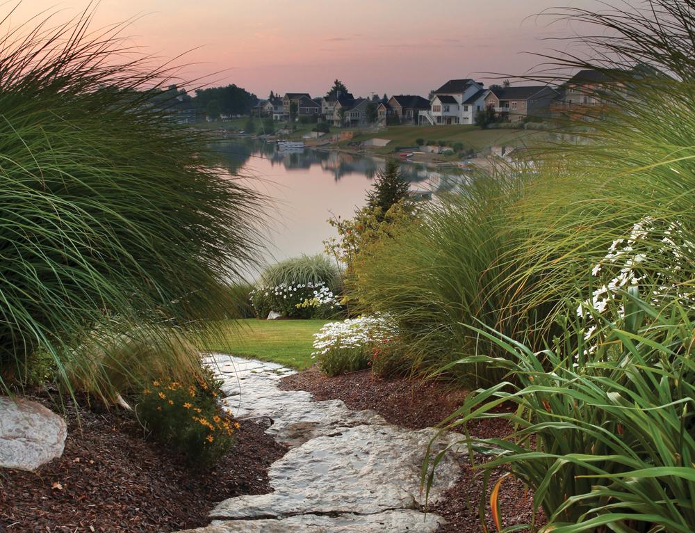 Lake-facing Lawn