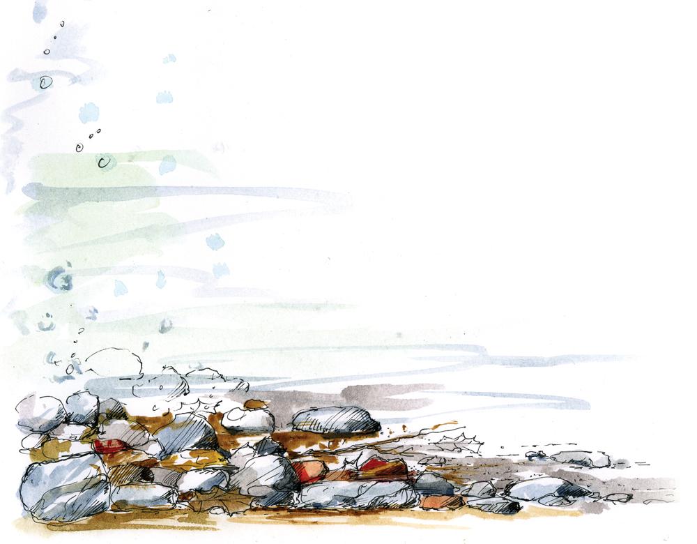 Water Water - Rocks