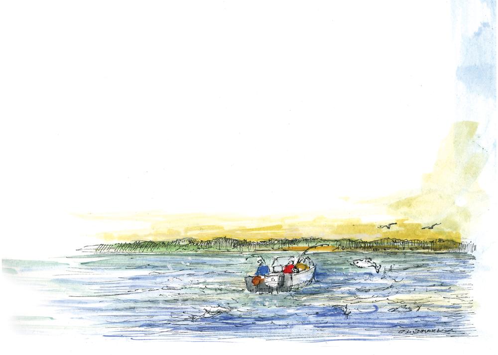 Lake Stories Illustration
