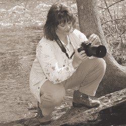 Stacy Niedzwiecki