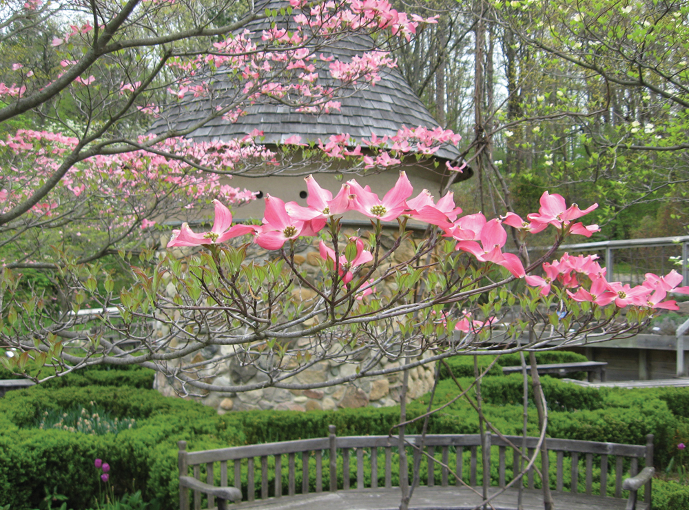 Fernwood Botanical Garden