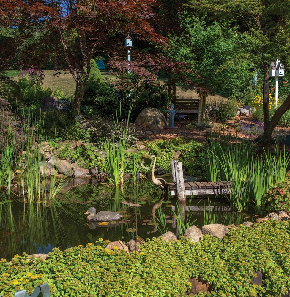 Janis Glassner garden