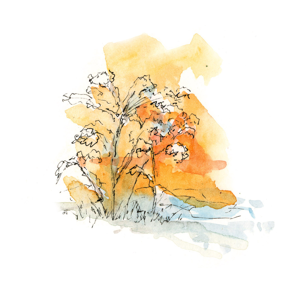 Winter Illustration by Gary W. Odmark Michigan Blue Magazine