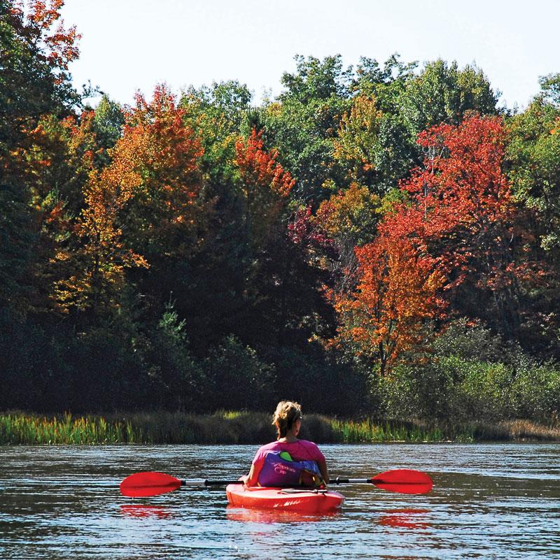 Fall Color Vista