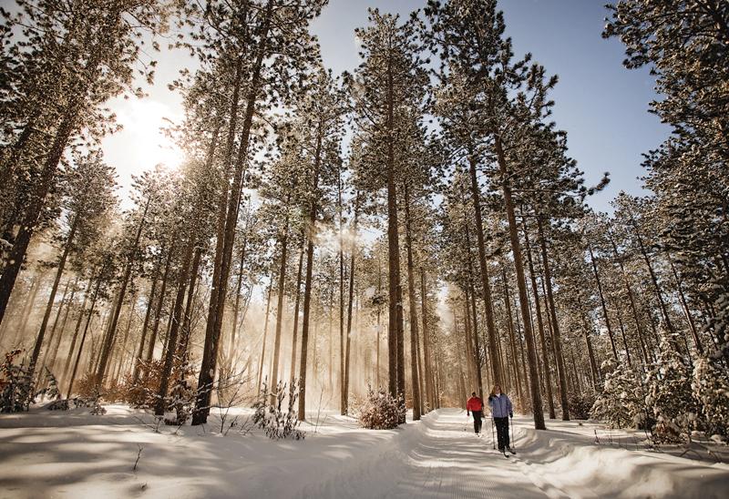 Crystal Mountain Cross-Country ski trail