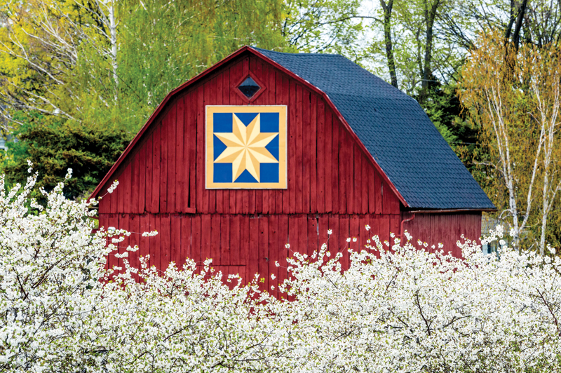 Fruit blossoms and barn quilt at Old Mission Peninsula