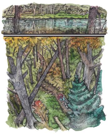 Making Trail illustration