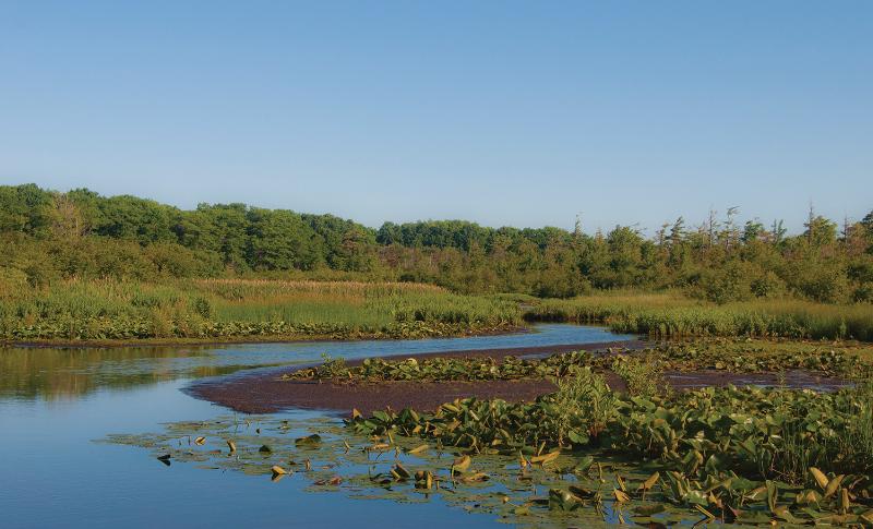 Palomtia Nature Reserve