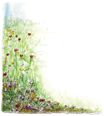 Flowers left