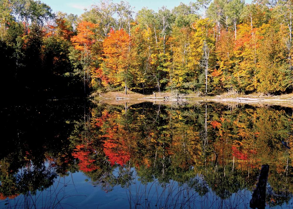 Fall Foliage at Big Sinkhole Lake