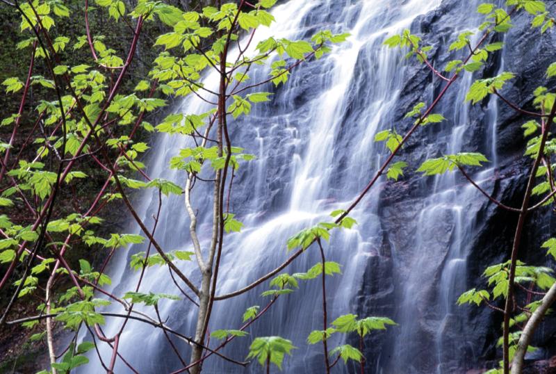 Hungarian Falls Nature Area