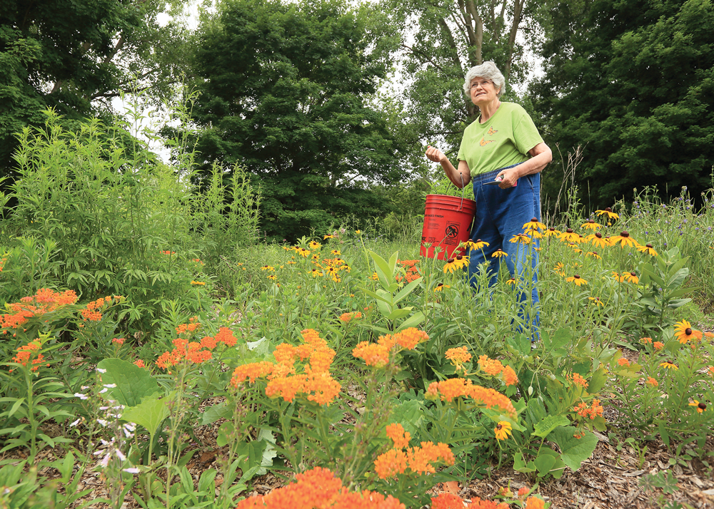 Ilse Gebhard Michigan conservationist