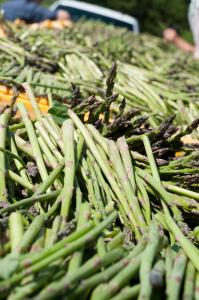 Asparagus at farmers market