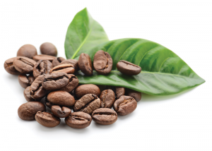 Coffee Beans and Plant Leaves