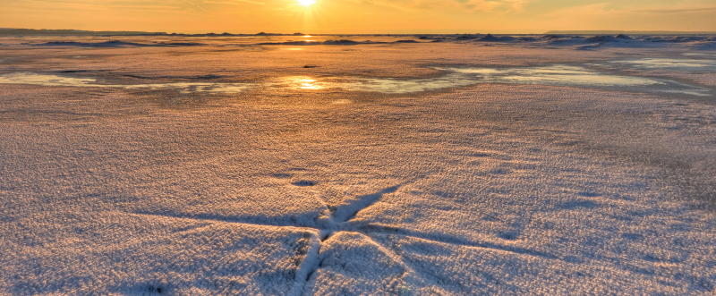 Fissures in the Ice