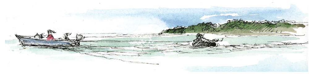 Family Tides Illustration speedboat