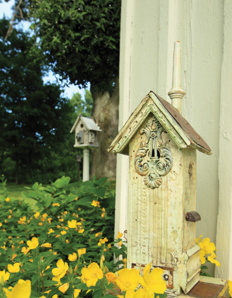 Birdhouse and flowers