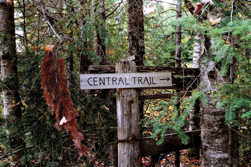 central trail hike