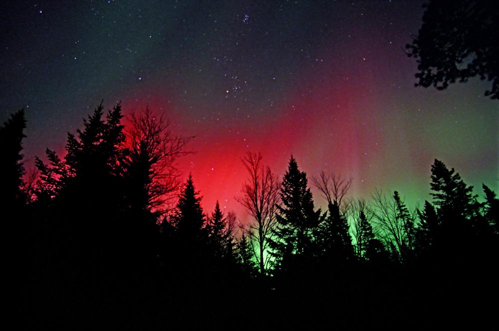 red aurora treelined silhouette