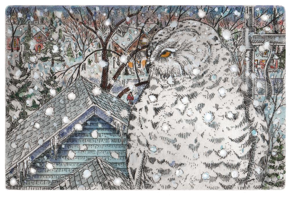 Snowy Owl Dennis Winter Art