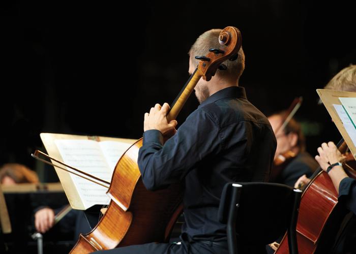 iStock Orchestra