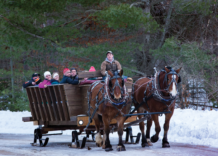 Group Sleigh Ride at Treetops Resort